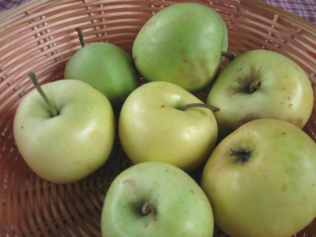 Оладки з яблуками