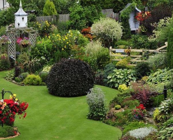 Як правильно стригти газон